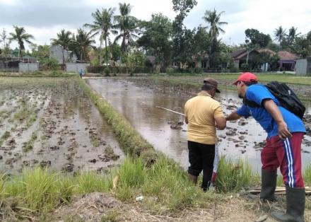 Inventarisasi Tanah Kas Desa Trimulyo